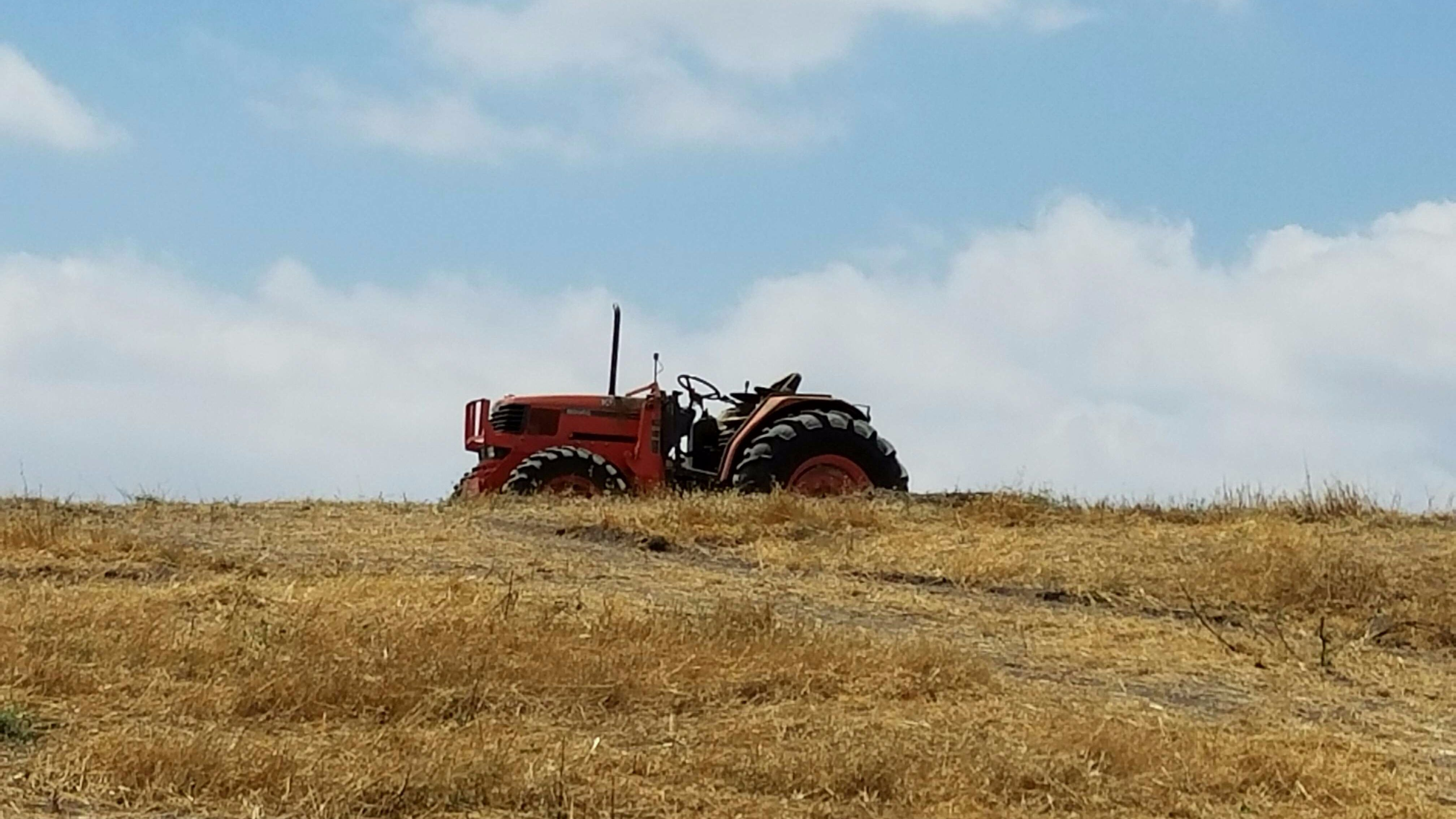 Down to Earth Land Clearing Solutions, Inc -Weed Abatement